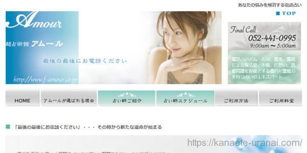 アムールのサイトイメージ画像
